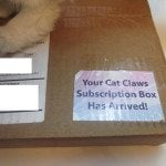 Cat Claws Club Subscription Box Review – April 2016