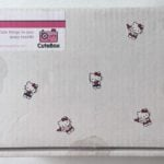 The CuteBox Subscription Review + Coupon – June 2016