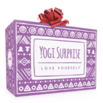 Yogi Surprise Winter Solstice Holiday Bonus Box Available Now!