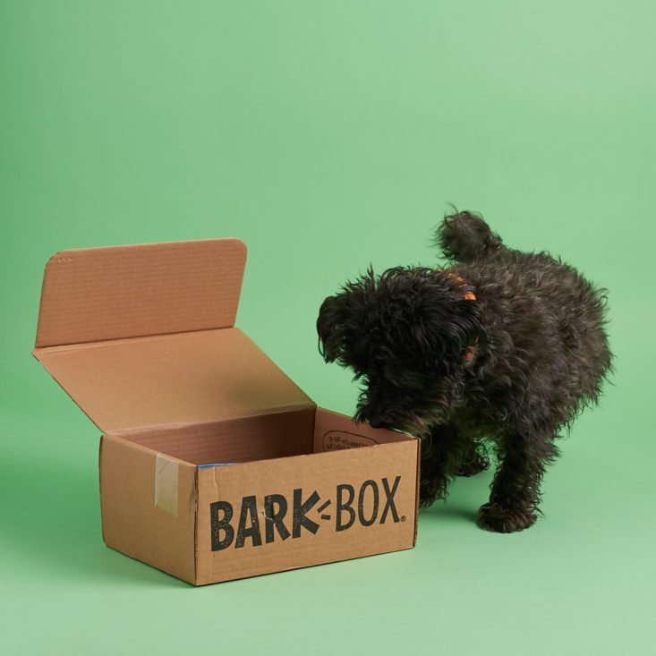 Barkbox coupon code 2018