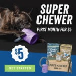 New BarkBox Coupon – First Super Chewer Box for $5!